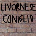 scritta su un muro livornese coniglio